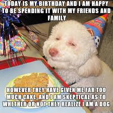Birthday Dog Meme - squinty eyed birthday dog oc adviceanimals