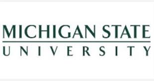 specialist teacher fixed term job with michigan state university
