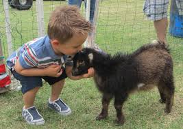 7 year old sickened by e coli at minnesota petting zoo returns to