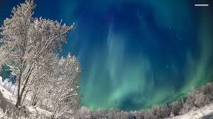 wonderful northern lights on a winter night walldevil