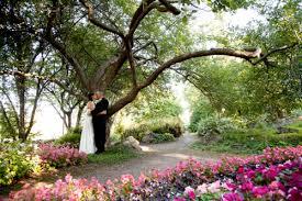 summerland ornamental gardens summerland wedding photographers