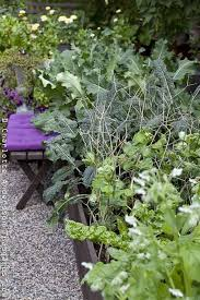 Kitchen Garden Designs 136 Best Edible Garden Design Images On Pinterest Edible Garden