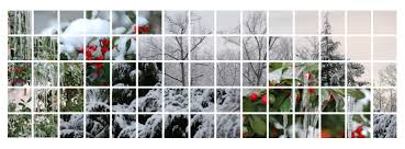 winter facebook covers cropdog photo collage