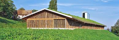 Cattle Barns Designs Beautiful Cow Barn In Basel Is Made Of Tree Branches Topped With A