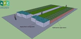 aquaponics business plan templates commercial aquaponics business