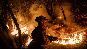 Wildfire Deaths Per Year by Death Toll From Northern California Fires Jumps To At Least 34