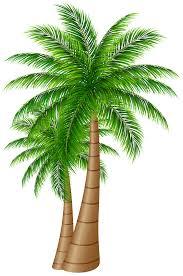 t shirt art black clip green large leaf leaves palm trees tropical