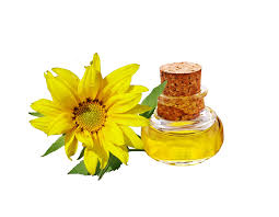 sunflower seeds and oil food source information