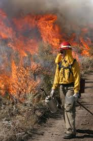 Arizona Firefighters Association by 24 Best Firefighters In Action Images On Pinterest Wildland