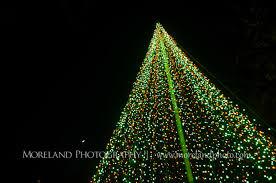 Botanical Garden Atlanta Lights Atlanta Botanical Gardens Christmas Proposal Derek Chelsea