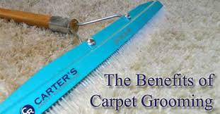 Rug Rakes The Benefits Of Carpet Grooming Carter U0027s Carpet Restoration
