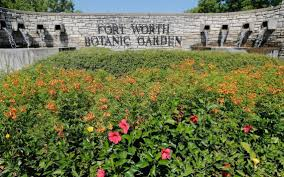 South Texas Botanical Gardens by Fort Worth Botanic Garden Programs Shifting To Brit Fort Worth