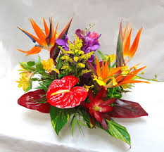 best 25 hawaiian centerpieces ideas on pinterest tropical