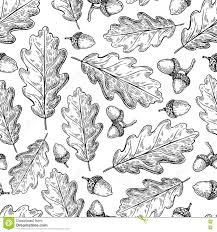 White Oak Tree Drawing Oak Tree Botanical Vintage Engraving Stock Illustration Image