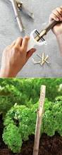 Cute Plant by Best 25 Plant Markers Ideas Only On Pinterest Plant Labels