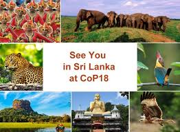 cites cop18 will be held in colombo sri lanka in may 2019 cites