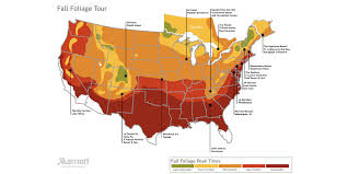 map a fall foliage tour this autumn season marriott news center