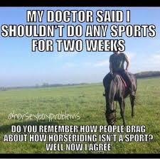 Horse Riding Meme - shit horse riders think facebook