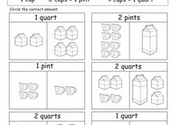 cup pint quart gallon worksheet 2nd grade measurement worksheets free printables education