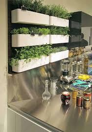 potager pour cuisine comment créer un potager dans un appartement entretenez et