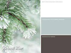 beautitone paint exclusive colours painting tips pinterest