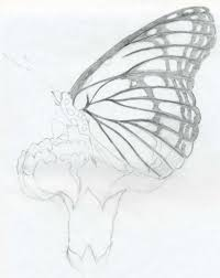 easy to draw pencil sketches butterfly pencil drawings drawing