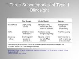 What Is Blind Sight Blindsight Vision In A Field Defect Savanahsecurityservices Com