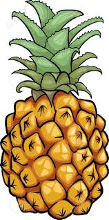 pineapple pineapple stock photos u0026 pictures royalty free pineapple images