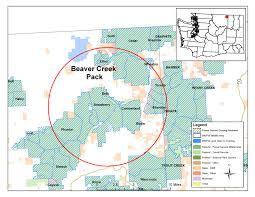 Eastern Washington Map by Washington Wolf Packs Beaver Creek Washington Department Of