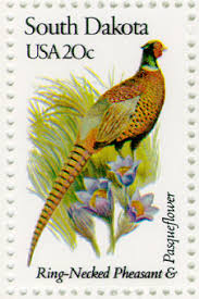 state bird of south dakota state flowers and sts