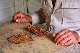 Tobacco Barn Huntsville Tx Exploring The Cuban Countryside A Day Trip From Havana To Viñales