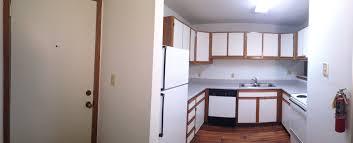 stadium view ii 4 bedroom apartment option a dekalb il