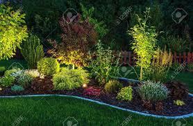 illuminated garden by led lighting backyard garden at night