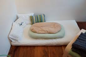 low height floor bed designs that will make you sleepy also