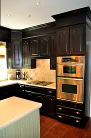 black glazed kitchen cabinets bathroom glamorous one color fits most black kitchen cabinets