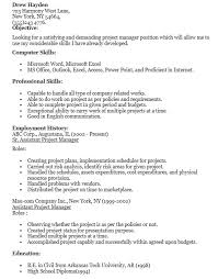 sample resume of project manager resume samples and resume help