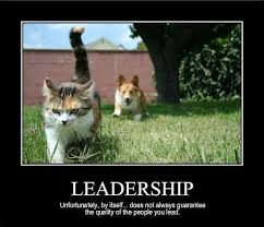 Leadership Meme - 40 best authentic leadership images on pinterest authentic