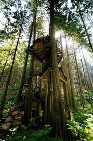 Tree House Home 429 Best Cool Tree Houses Images On Pinterest Treehouses