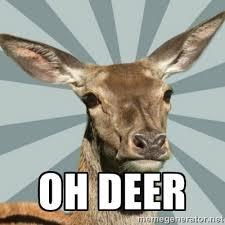 Oh Deer Meme - confessions thread