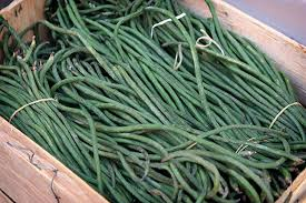 Types Of Garden Beans - great veggies 4 100 degree weathet summer vegetables asparagus