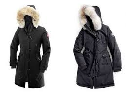 canada goose sale black friday that proud arrogance of the canada goose finally also want to open