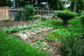 perfect vegetable garden layout gardening in georgia archives seg2011 com