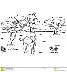 giraffe coloring pages vector stock vector image 60004246
