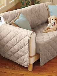 Furniture Protectors For Sofas by Ultimate Furniture Protector For Sofas Protect Your Couch From
