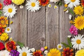 garden flowers over blue wooden table background backdrop with