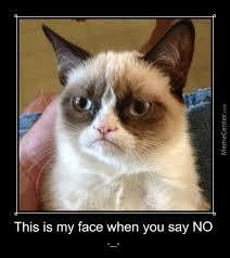 Grumpy Meme Face - grumpy cat my face when you say no by michaeljacksonghost meme center