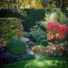 Shrub Garden Ideas 598 Best For My Garden Images On Pinterest Garden Garden Ideas