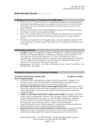 Executive Summary For Resume Sample by Summary On A Resume Examples Interesting Ideas Examples Of