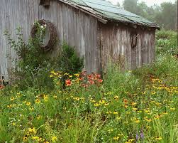 Country Backyard Landscaping Ideas Triyae Com U003d Rustic Backyard Landscaping Ideas Various Design
