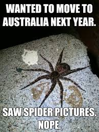 Australia Meme - wanted to move to australia next year saw spider pictures nope